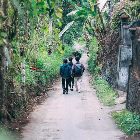 バリ島コーヒー農園ツアー