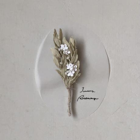 [季節のお花ブローチ]1月:ローズマリー