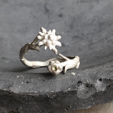 [8月誕生花×誕生石]エーデルワイスのリング* Gold/Silver