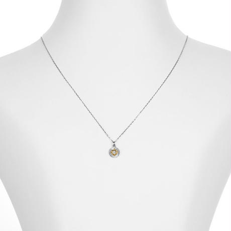 PT/K18YG ダイヤモンド コインネックレス