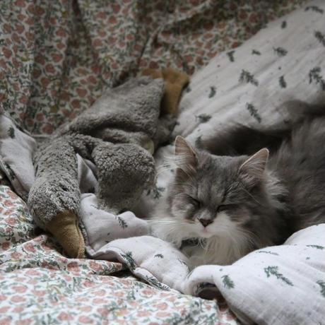 garbo&friends / Muslin  Blanket 中綿入りブランケット・ Rosemary Filled