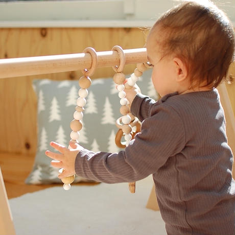 Baby Play Gym