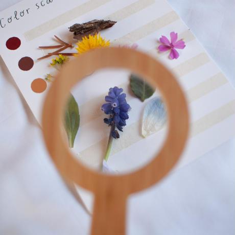 Explore  Nature Kit B