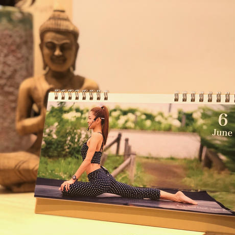 【期間限定販売】little yogi storeスペシャルセット