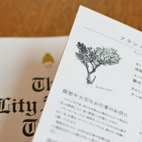 ライティ・アロマ・タイムズ A5版 20P