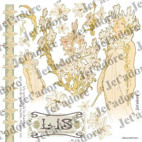 <MUCHA>004/ユリ∫CJ-ART-0114∫6
