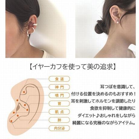 ハワイアンジュエリー イヤーカフ 片耳用 2連風 金属アレルギー対応 スクロール 波 ハワジュ サージカル ステンレス PVD インスタ ges8233