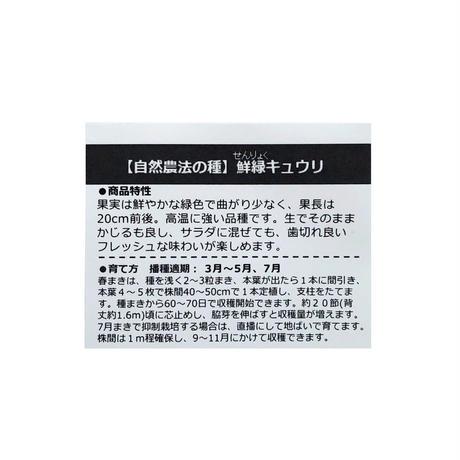 【有機種子】鮮緑キュウリ 約8粒 ※レターパックライト発送可能