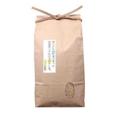 つるさね農園の玄米 2kg (栽培期間中 農薬・化学肥料不使用)