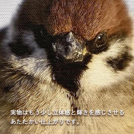 福良雀【キャンバスタイプ】