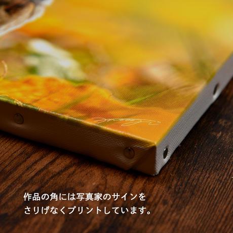 立ち止まる秋Ⅱ【キャンバスタイプ】