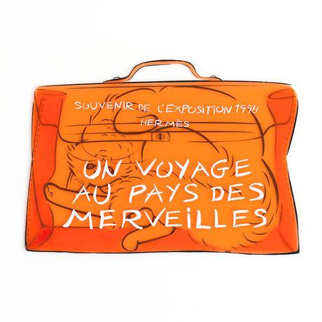 Turkish Van × Plastic Kelly Bag