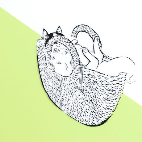 Norwegian Forest Cat × Basket