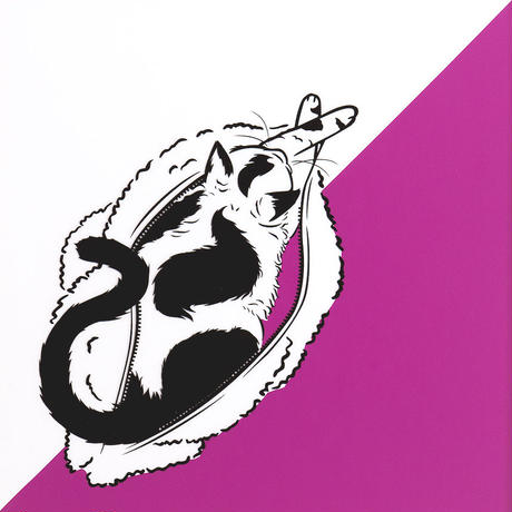 Selkirk Rex × Fur Pouch