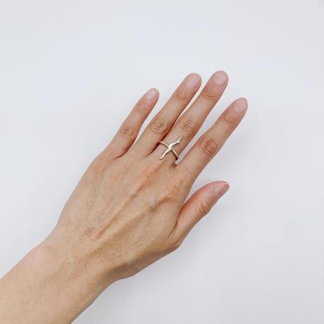 Ice ring 01