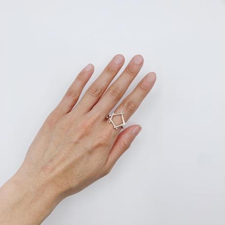 Branch ring 21