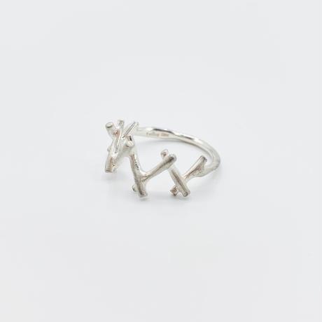Branch ring 17