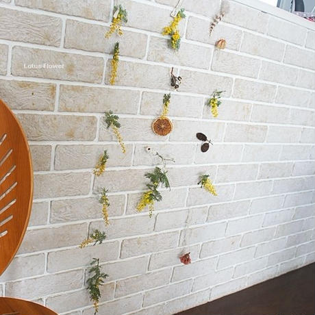 Mimosa and garland of dry