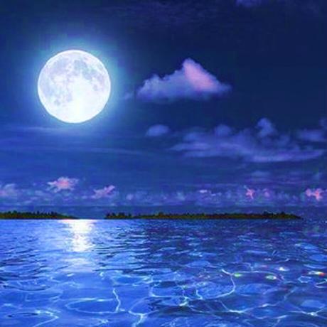 Moonlight 〜月の光・癒しと浄化 3mlフラワーボトル