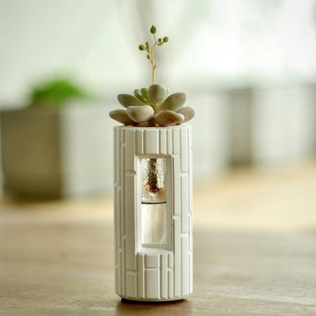 """PLUG - SW -""  ハイドロカルチャー・水栽培容器/花瓶/Cement Flower Vase"