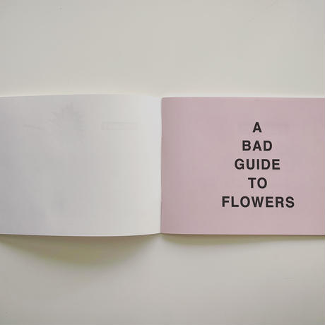 A BAD GUIDE TO FLOWERS BOUQUET