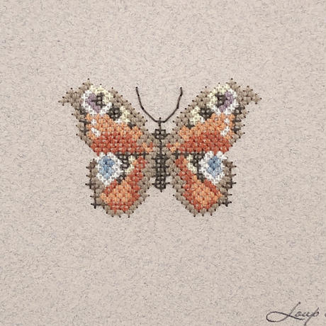Small  embroidery   小さな刺繍   Papillon  B