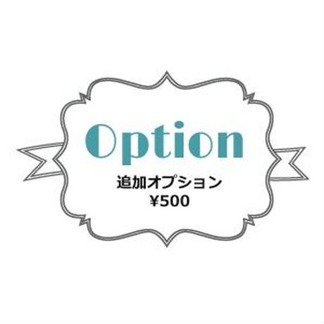 追加オプション*¥500