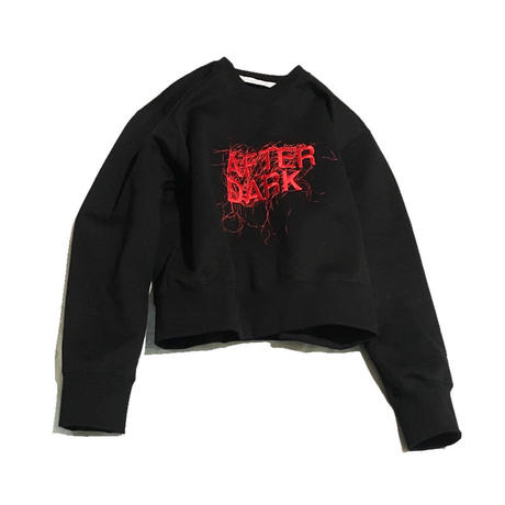 "JOHN LAWRENCE SULLIVAN ""AFTER DARK"" EMBROIDERED SWEAT SHIRT"