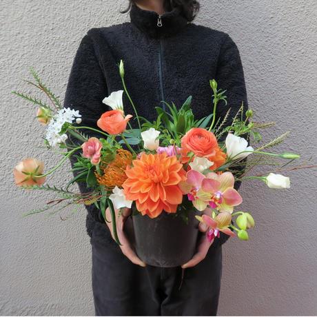 seasonal arrangement : spring 【¥8,000】