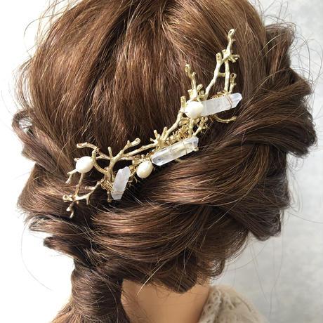coral comb