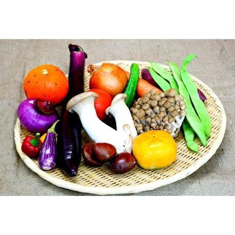 [オープン記念]オーガニック旬野菜お試しセット