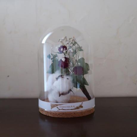 ガラス瓶の植物標本(直径10cm×高さ16㎝) 薔薇とコットンフラワーの花束