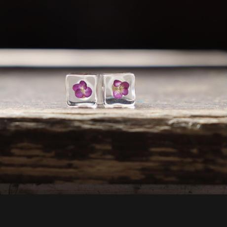 「時」ピアス/イヤリング  アリッサム紫