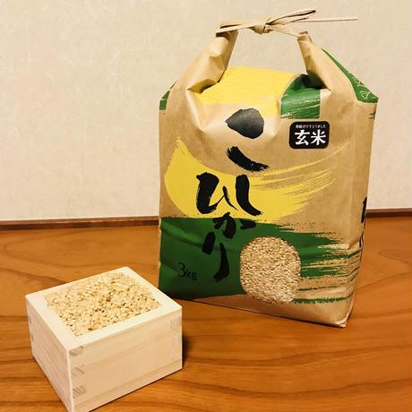 令和元年度静岡県産 新米 玄米コシヒカリ (無農薬栽培)3㎏