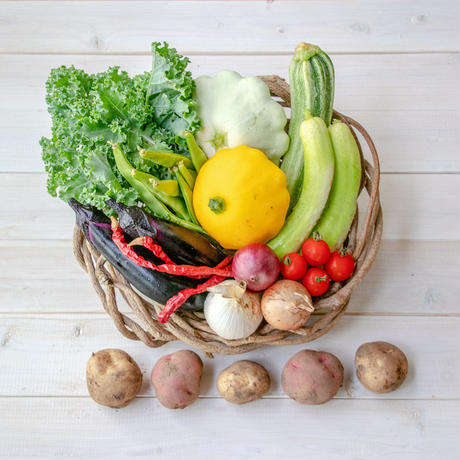 【定期便】『まえむき。』の、自然と一緒に育てた旬の野菜セット6~7種類