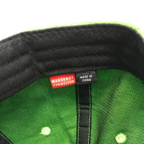 SUMMER CORDUROY CAP (CHAMELEON)
