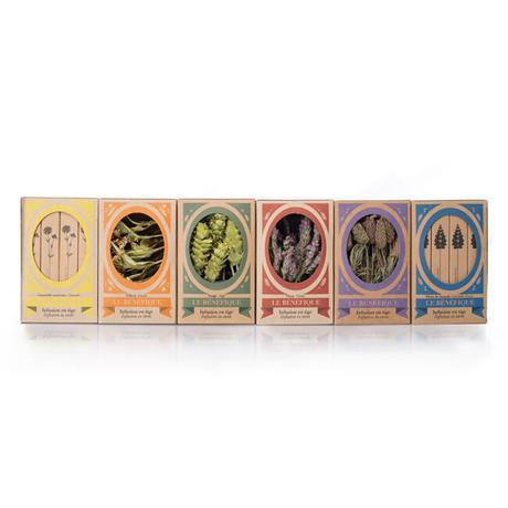 《月1定期便・送料無料》スルタン ソリマン シリーズ 6品種を毎月お届け