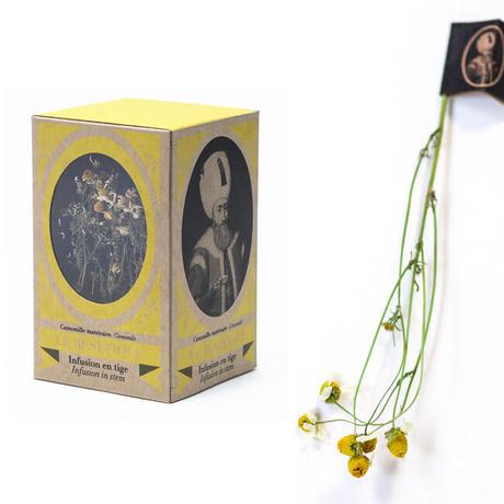 スルタン ソリマン (カモミール) +マグカップセット