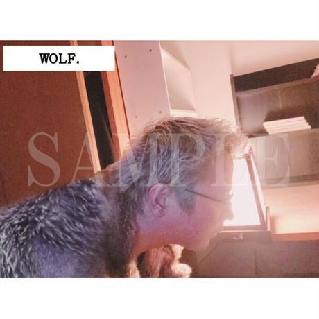 【C yana】Tシャツ「 WOLF. 」(期間限定)IC-T07-02