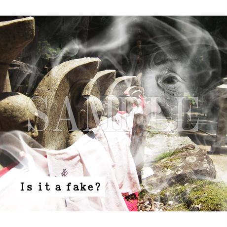 【C yana】Tシャツ「Is it a fake?  地蔵」(期間限定)IC-T06-01-11