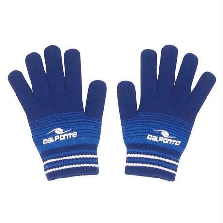 DALPONTE/ダウポンチ/ニット手袋(ネイビー)【DPZ0284-NVY】