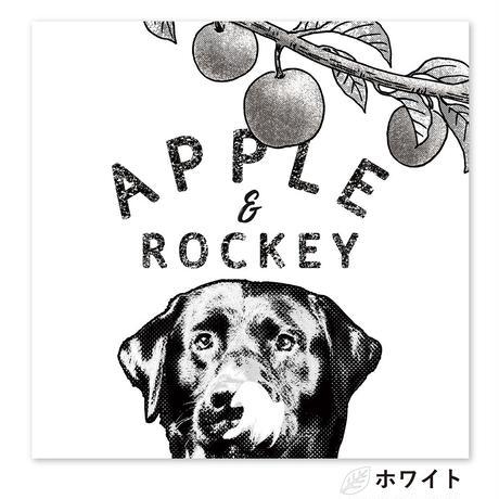 Apple and me (リンゴと僕) S4サイズ(33.3×33.3cm)