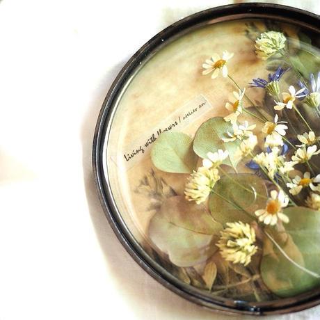 シロツメグサと小花のドームガラスアレンジメント