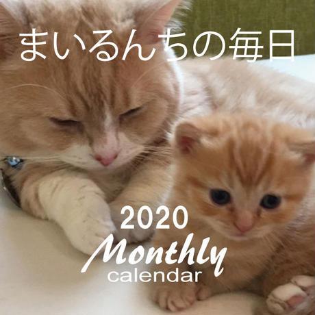 【送料無料】2020年『まいるんちの毎日』壁掛けカレンダー