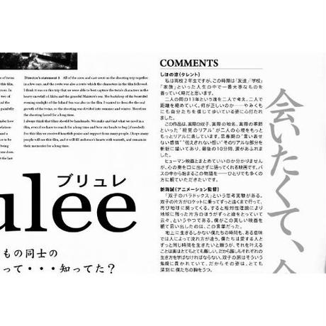 映画『ブリュレ』DVD&B2ポスターパンフレット&ポストカード