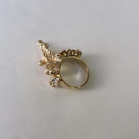 IBARA RING SEED