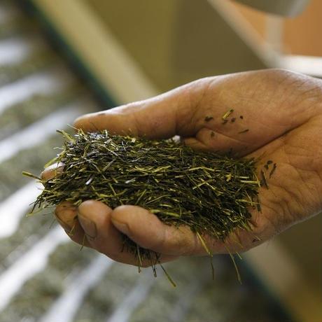 MAM CHA TAMAKAWA(緑茶)