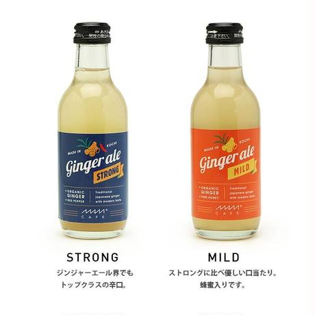 MAM  GINGER ALE:STRONG/MILD