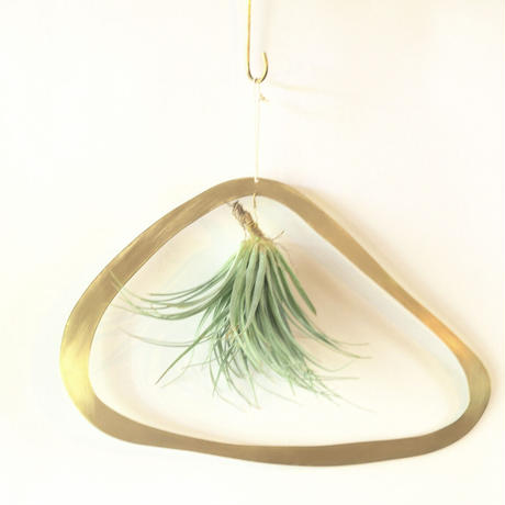 airplants with brass flame  L