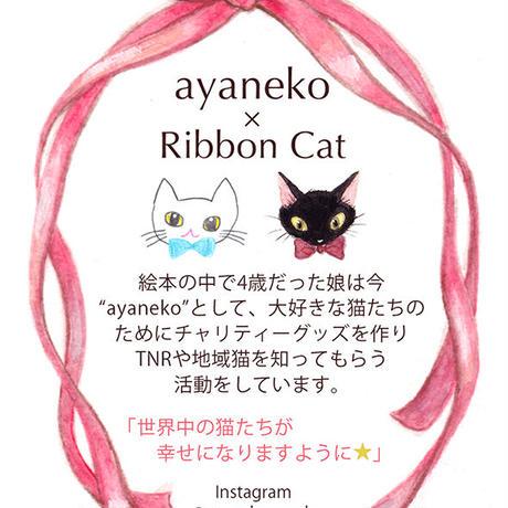 全盲黒猫チャムのマスコット&絵本セット